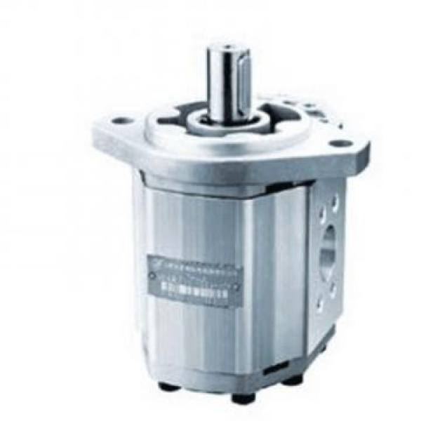 CBW-F310-CFP Hydraulic CBW Series Gear Pump #1 image