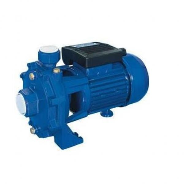 R902080851A8VO55LAXH3/61R1-NZG05K020-S imported with original packaging Original Rexroth A8V series Piston Pump #1 image