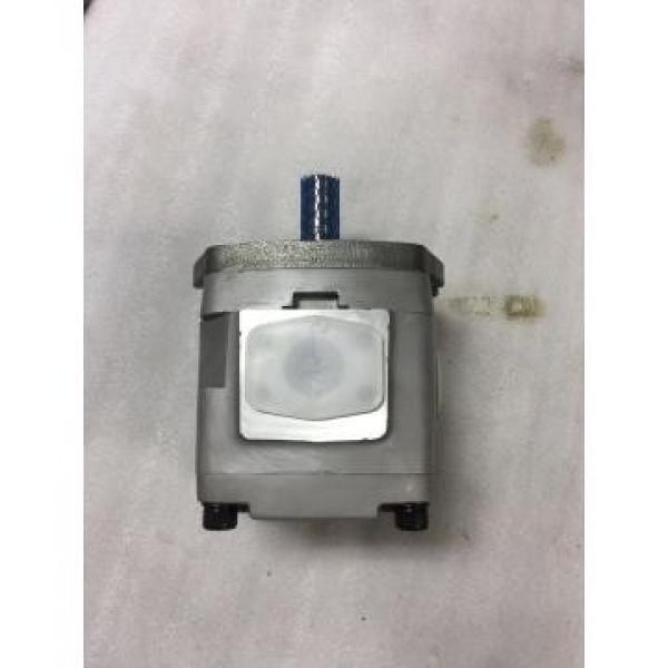 IPH-5B-50-11 Nachi Gear Pump IPH Series #2 image