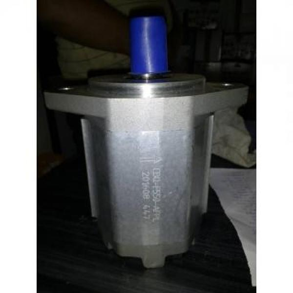 CBW-F310-CFP Hydraulic CBW Series Gear Pump #2 image