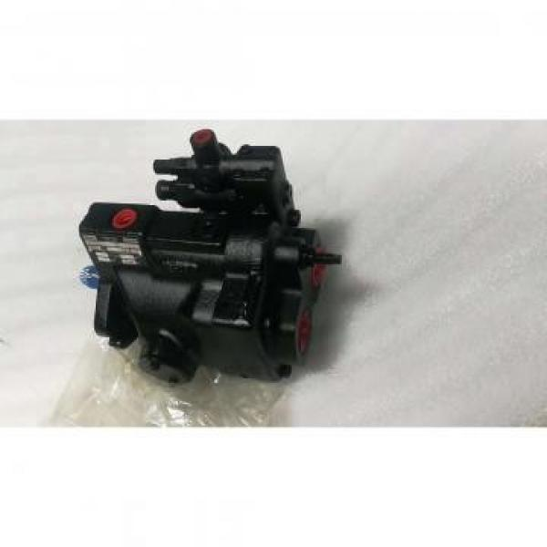 PV29-2R1D-J02 DENISON PV29 series Piston Pump #1 image